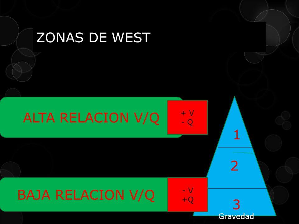 ZONAS DE WEST ALTA RELACION V/Q 1 2 BAJA RELACION V/Q 3 + V - Q - V +Q