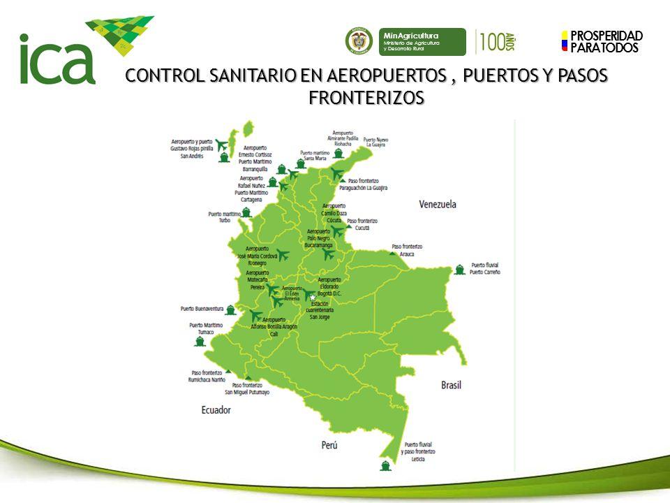 CONTROL SANITARIO EN AEROPUERTOS , PUERTOS Y PASOS FRONTERIZOS