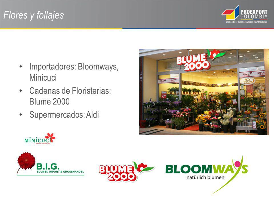 Flores y follajes Importadores: Bloomways, Minicuci