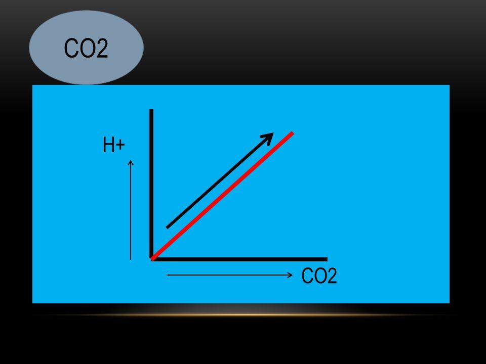 CO2 H+ CO2