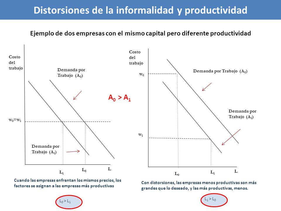 Distorsiones de la informalidad y productividad