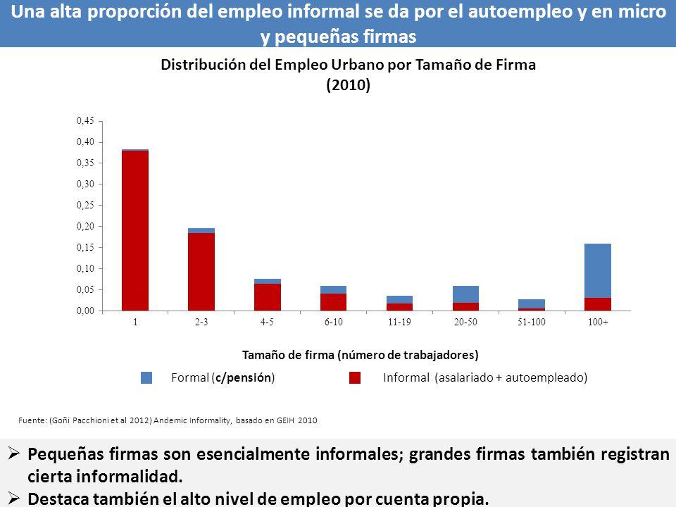 Una alta proporción del empleo informal se da por el autoempleo y en micro y pequeñas firmas