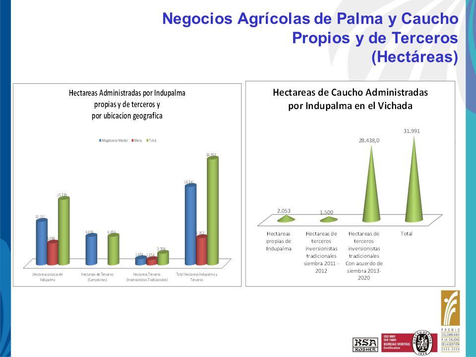 Negocios Agrícolas de Palma y Caucho