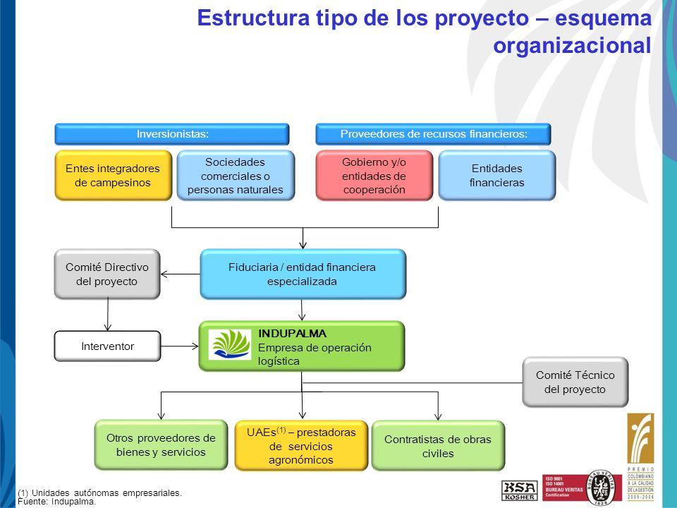 Estructura tipo de los proyecto – esquema organizacional
