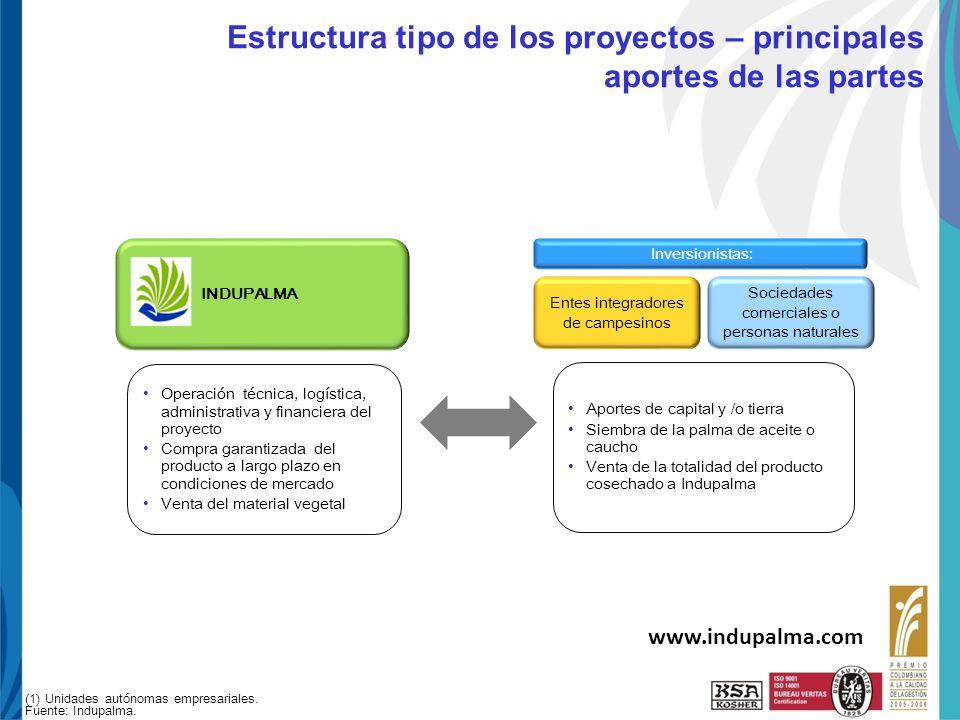Estructura tipo de los proyectos – principales aportes de las partes