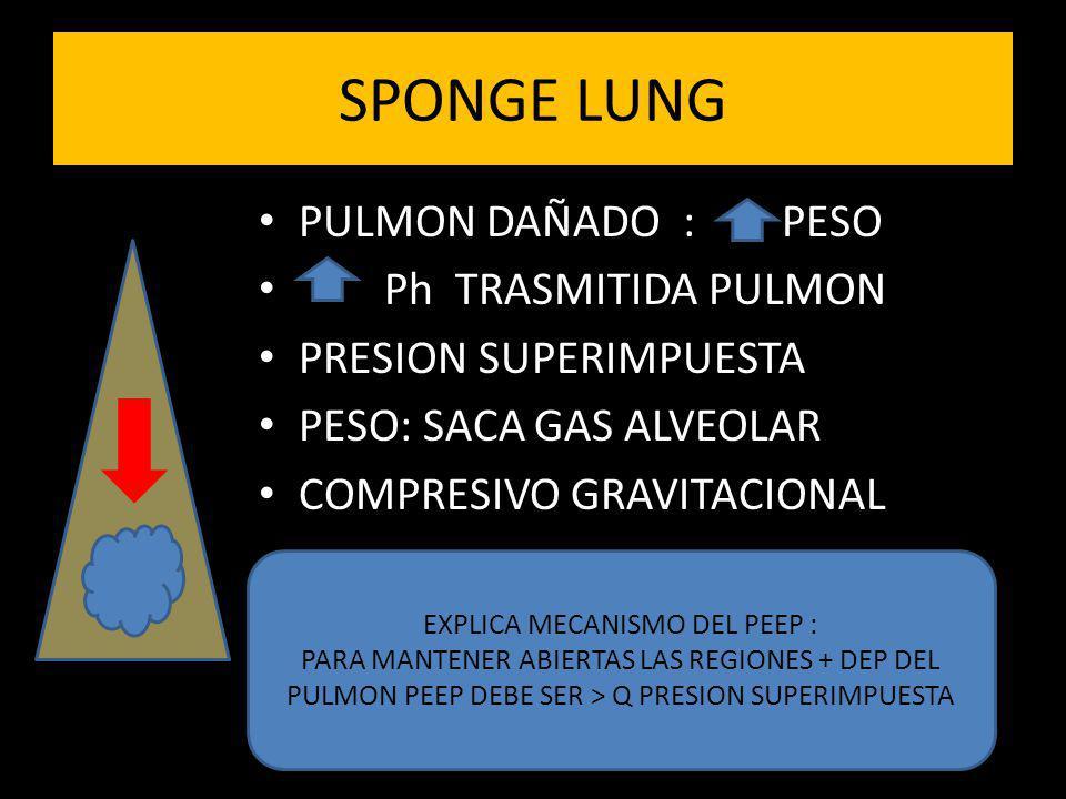 EXPLICA MECANISMO DEL PEEP :