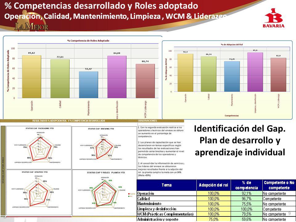 Identificación del Gap. Plan de desarrollo y aprendizaje individual