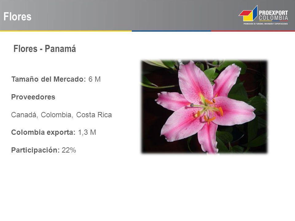 Flores Flores - Panamá Tamaño del Mercado: 6 M Proveedores
