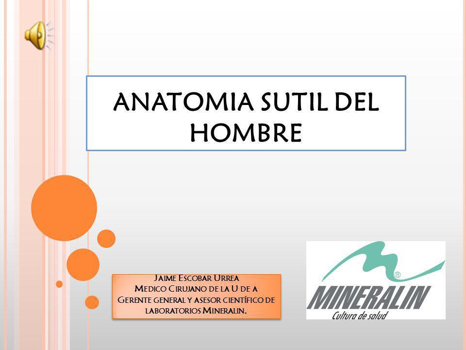 ANATOMIA SUTIL DEL HOMBRE