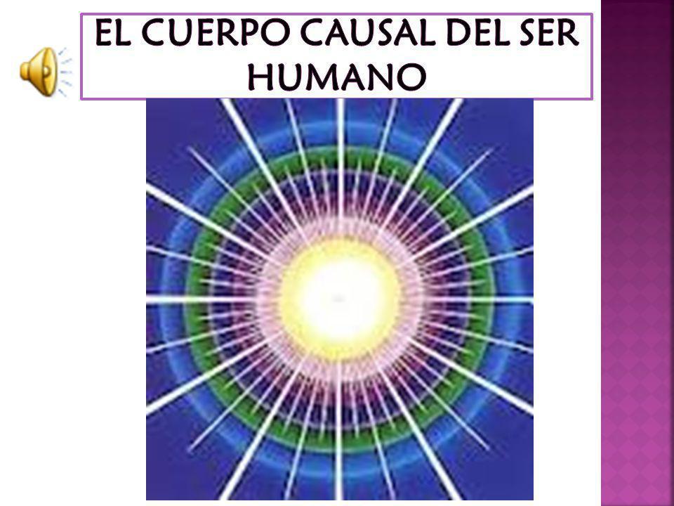 EL CUERPO CAUSAL DEL SER HUMANO