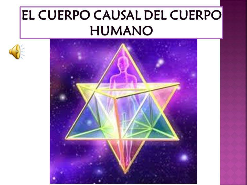 EL CUERPO CAUSAL DEL CUERPO HUMANO
