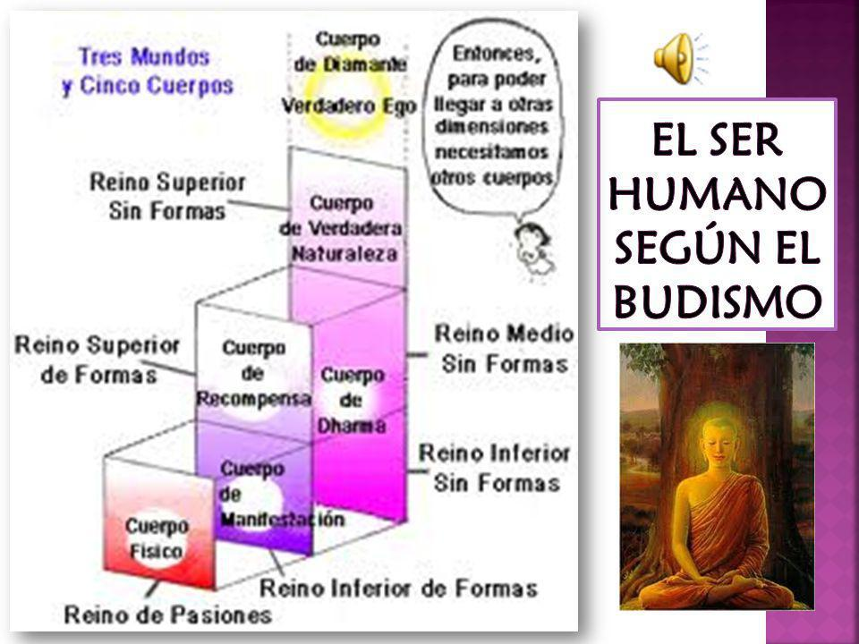 EL SER HUMANO SEGÚN EL BUDISMO