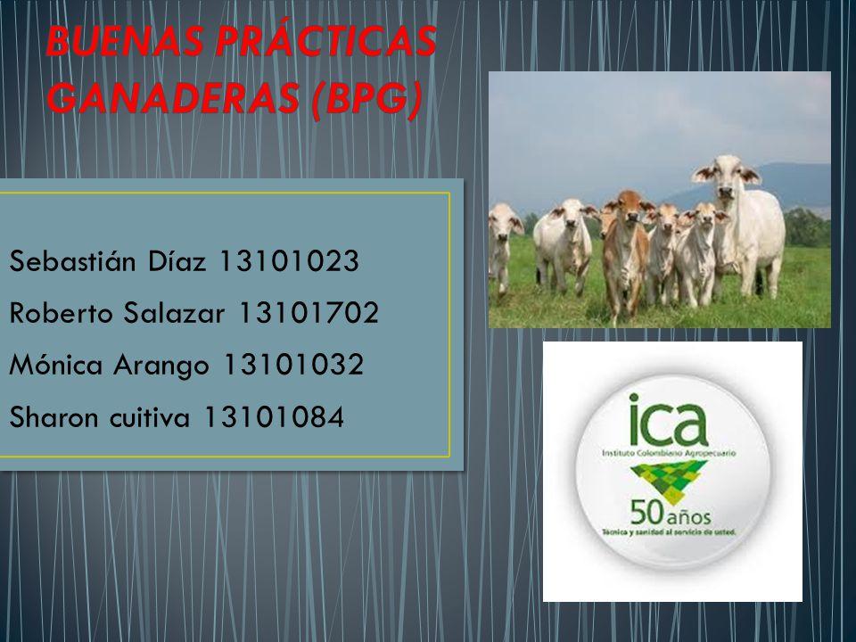 BUENAS PRÁCTICAS GANADERAS (BPG)