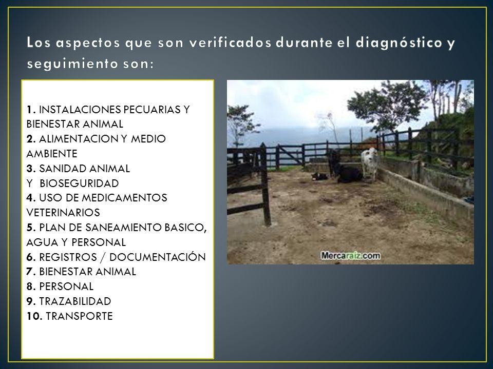 Los aspectos que son verificados durante el diagnóstico y seguimiento son:
