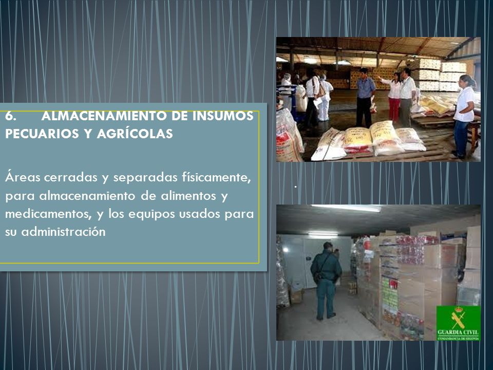 6. ALMACENAMIENTO DE INSUMOS PECUARIOS Y AGRÍCOLAS