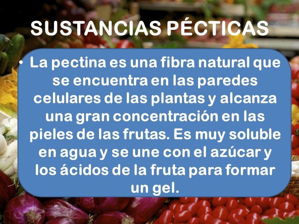 SUSTANCIAS PÉCTICAS