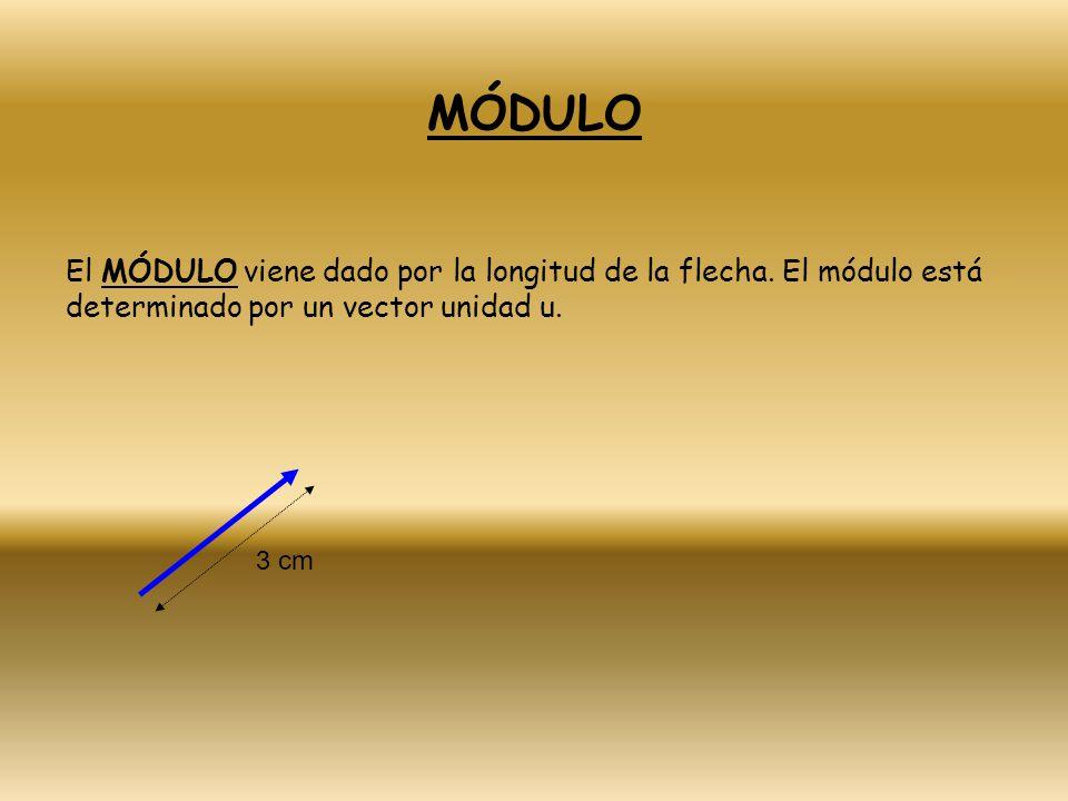 MÓDULO El MÓDULO viene dado por la longitud de la flecha. El módulo está determinado por un vector unidad u.