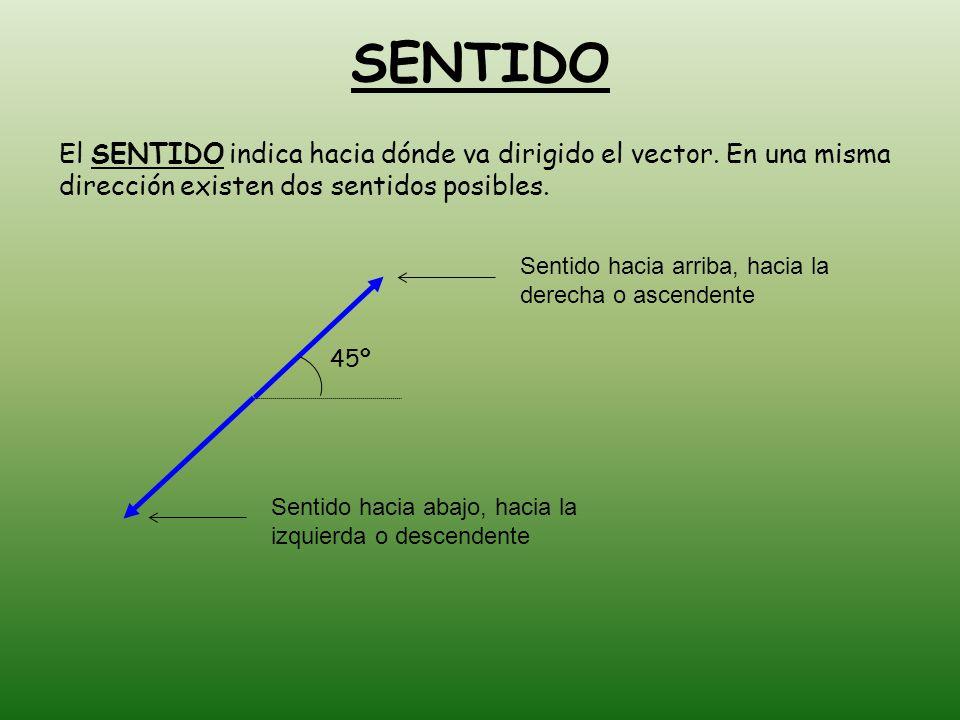 SENTIDO El SENTIDO indica hacia dónde va dirigido el vector. En una misma dirección existen dos sentidos posibles.