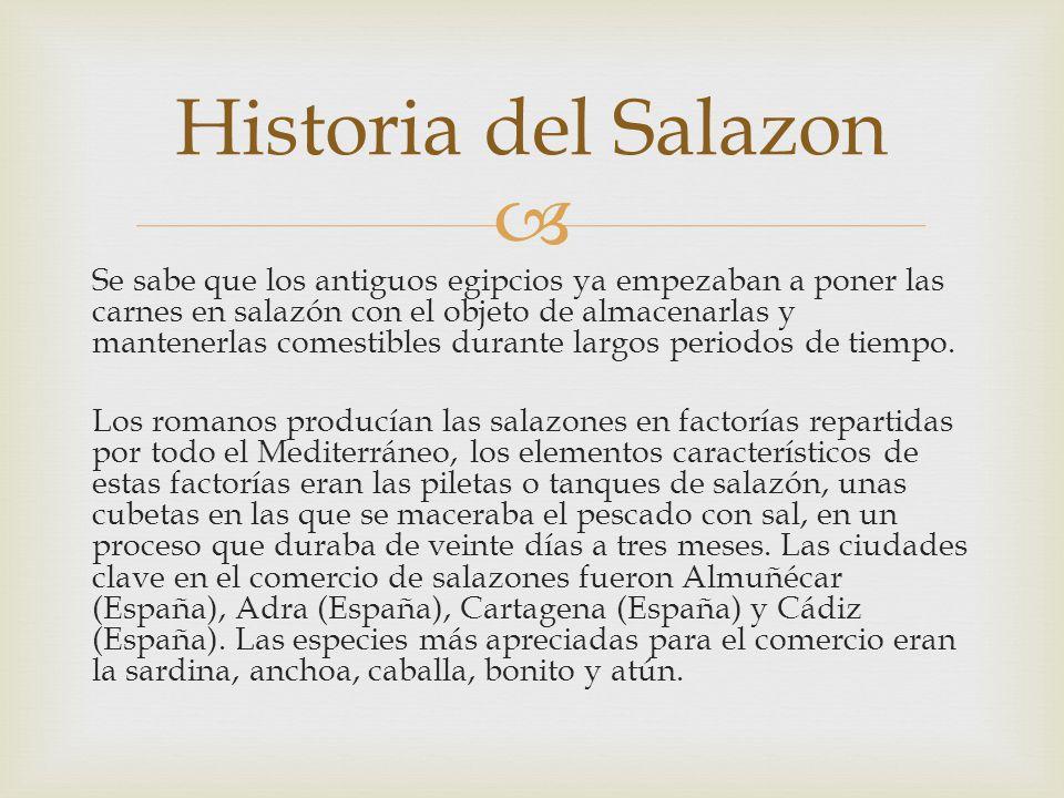 Historia del Salazon