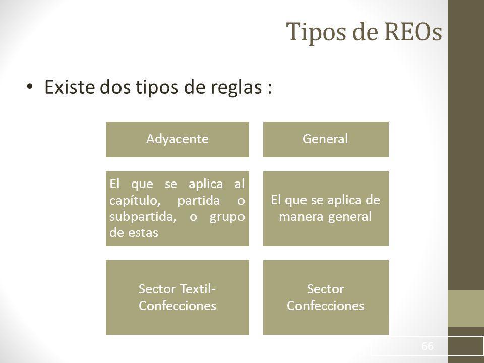 Tipos de REOs Existe dos tipos de reglas : Adyacente General