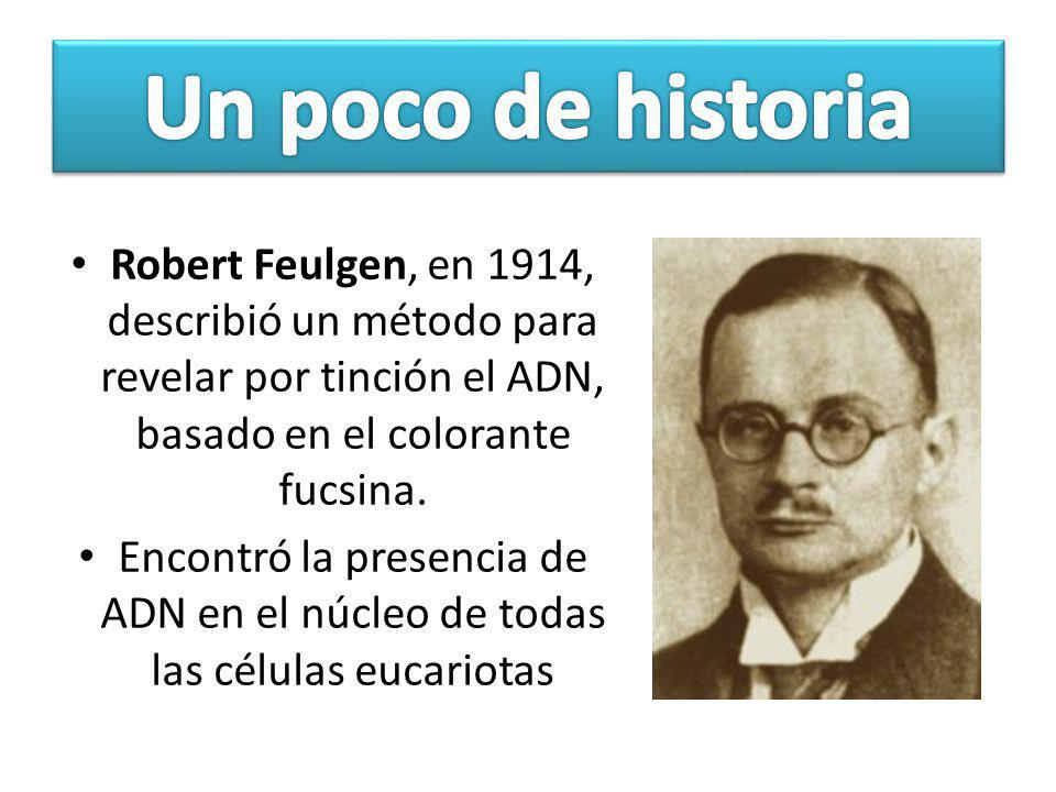 Un poco de historia Robert Feulgen, en 1914, describió un método para revelar por tinción el ADN, basado en el colorante fucsina.