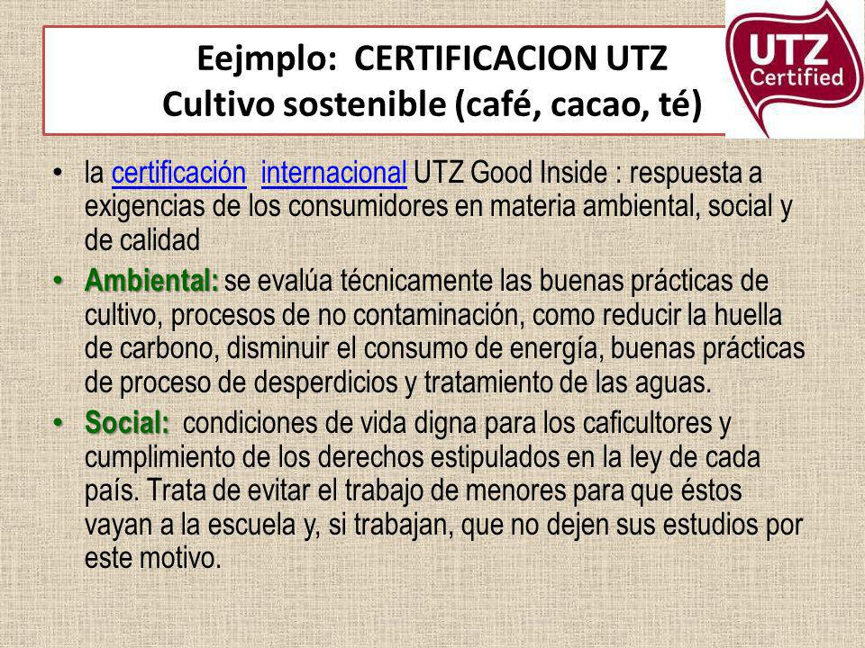 Eejmplo: CERTIFICACION UTZ Cultivo sostenible (café, cacao, té)