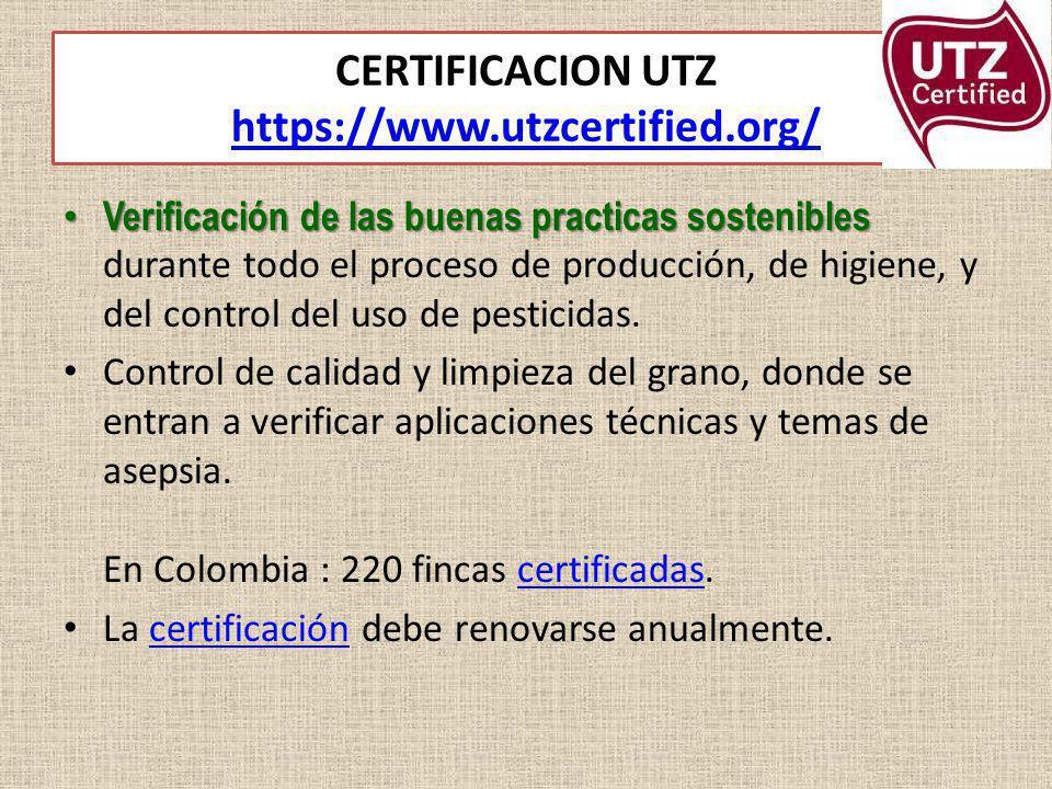 CERTIFICACION UTZ https://www.utzcertified.org/