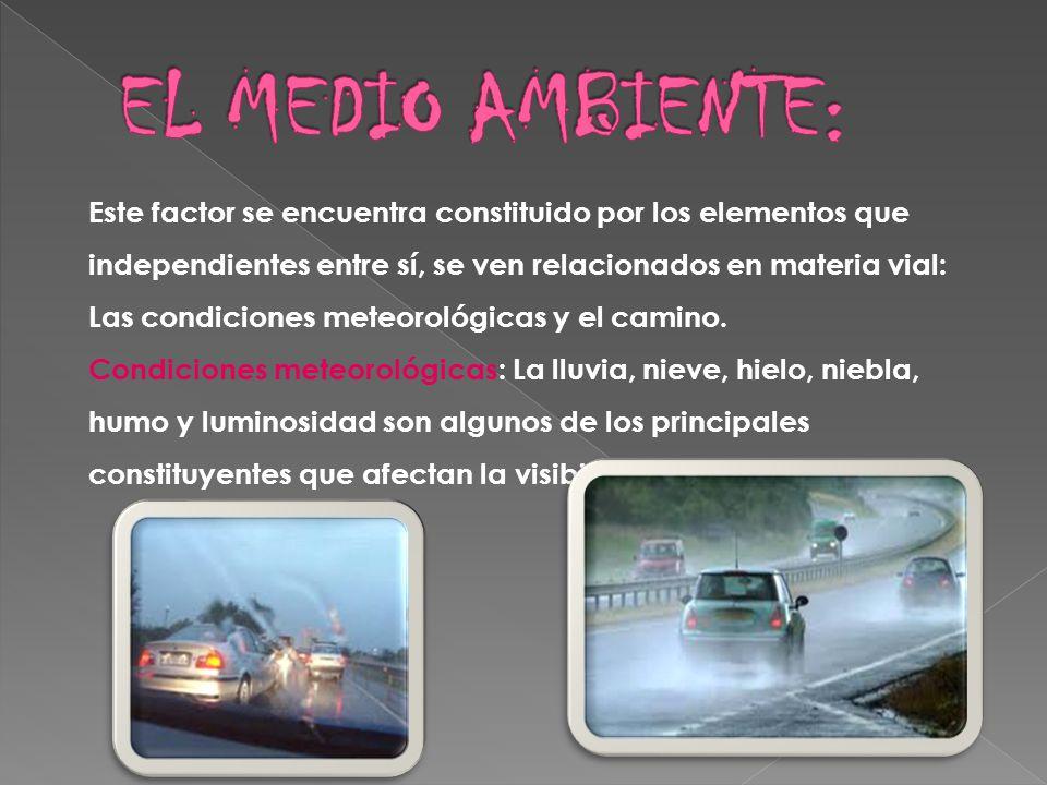 EL MEDIO AMBIENTE: