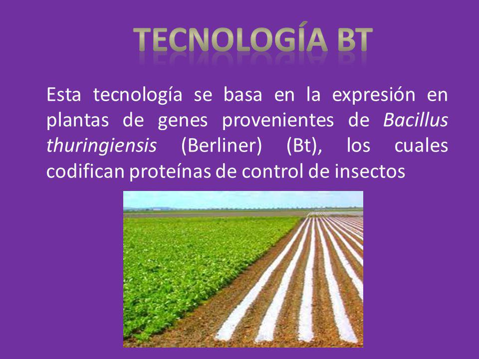 Tecnología bt