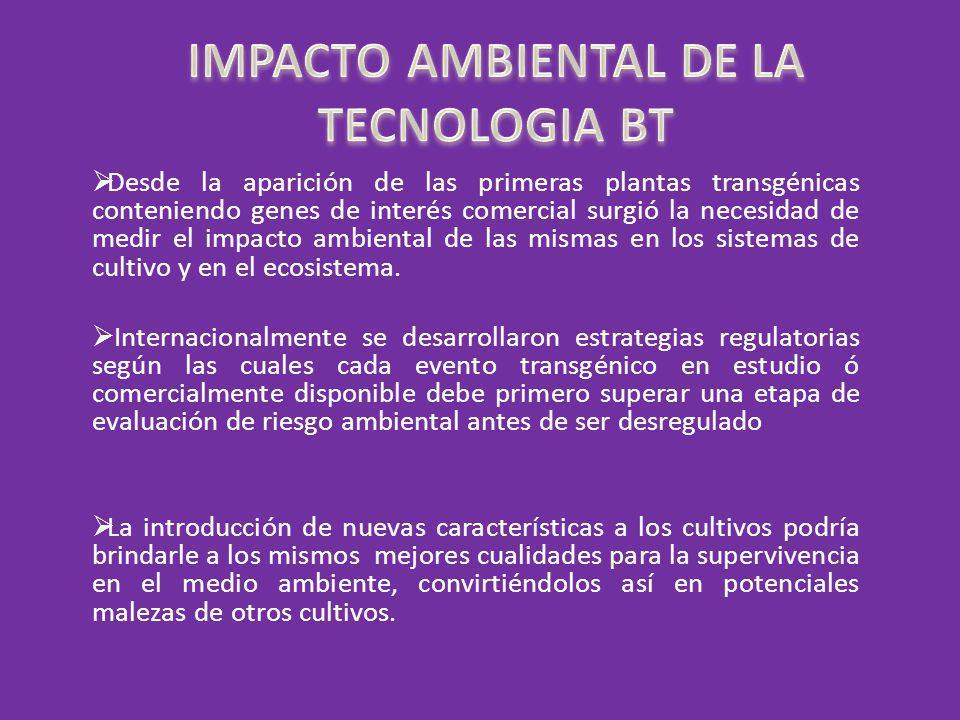 IMPACTO AMBIENTAL DE LA