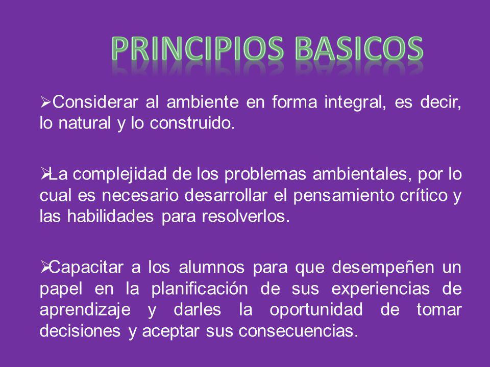 Principios basicos Considerar al ambiente en forma integral, es decir, lo natural y lo construido.