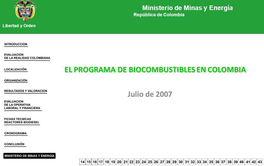 EL PROGRAMA DE BIOCOMBUSTIBLES EN COLOMBIA