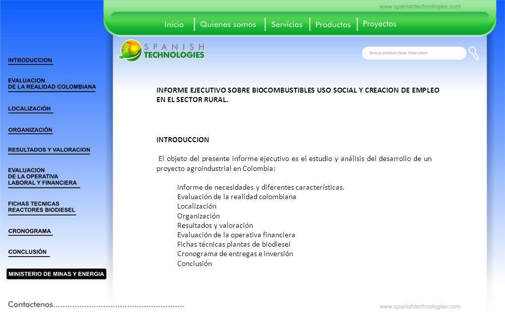 INFORME EJECUTIVO SOBRE BIOCOMBUSTIBLES USO SOCIAL Y CREACION DE EMPLEO EN EL SECTOR RURAL.
