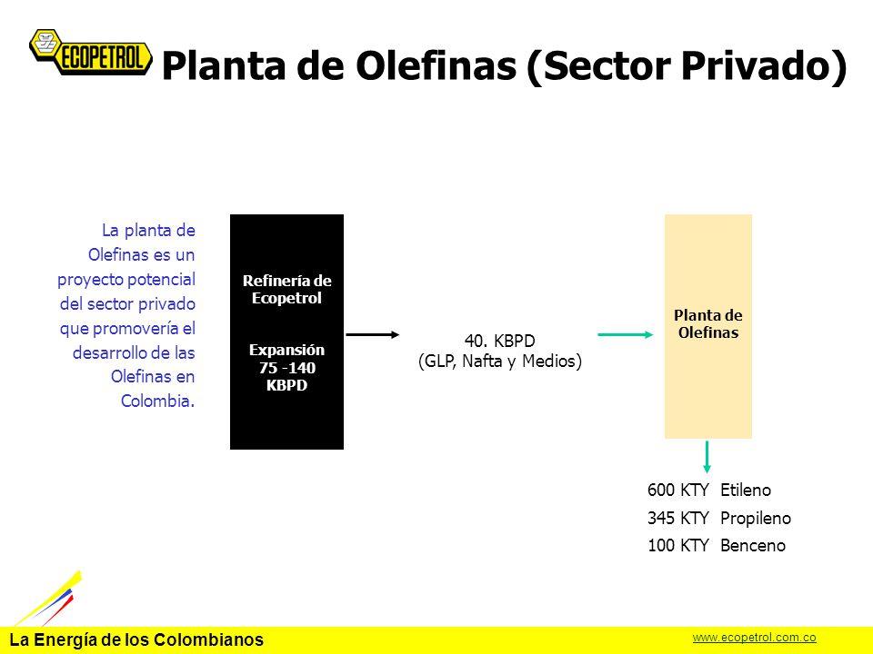Planta de Olefinas (Sector Privado)