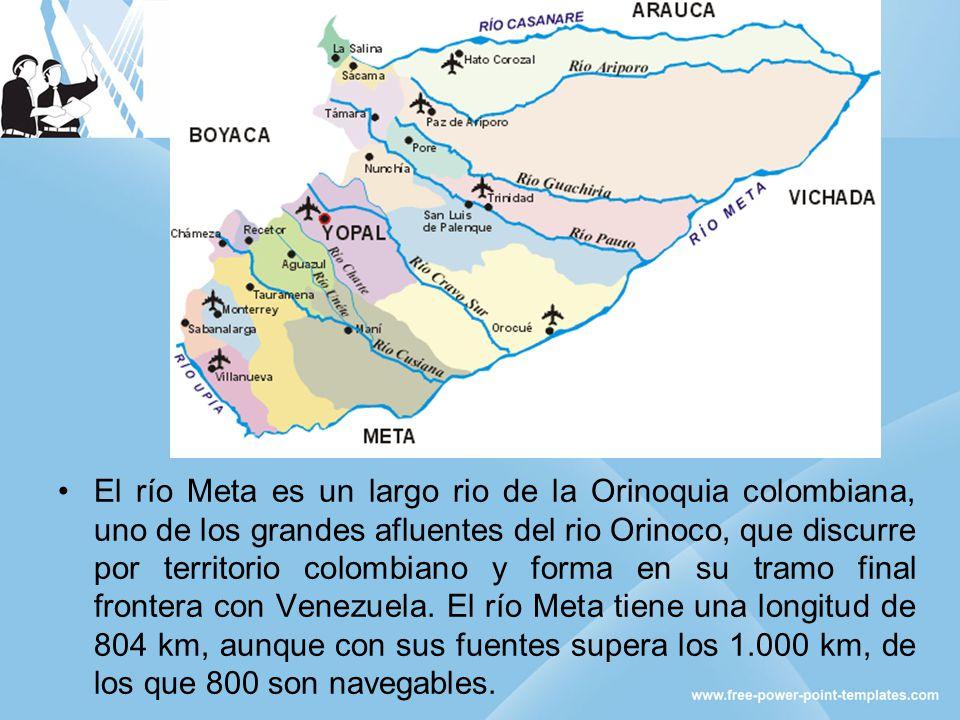 El río Meta es un largo rio de la Orinoquia colombiana, uno de los grandes afluentes del rio Orinoco, que discurre por territorio colombiano y forma en su tramo final frontera con Venezuela.