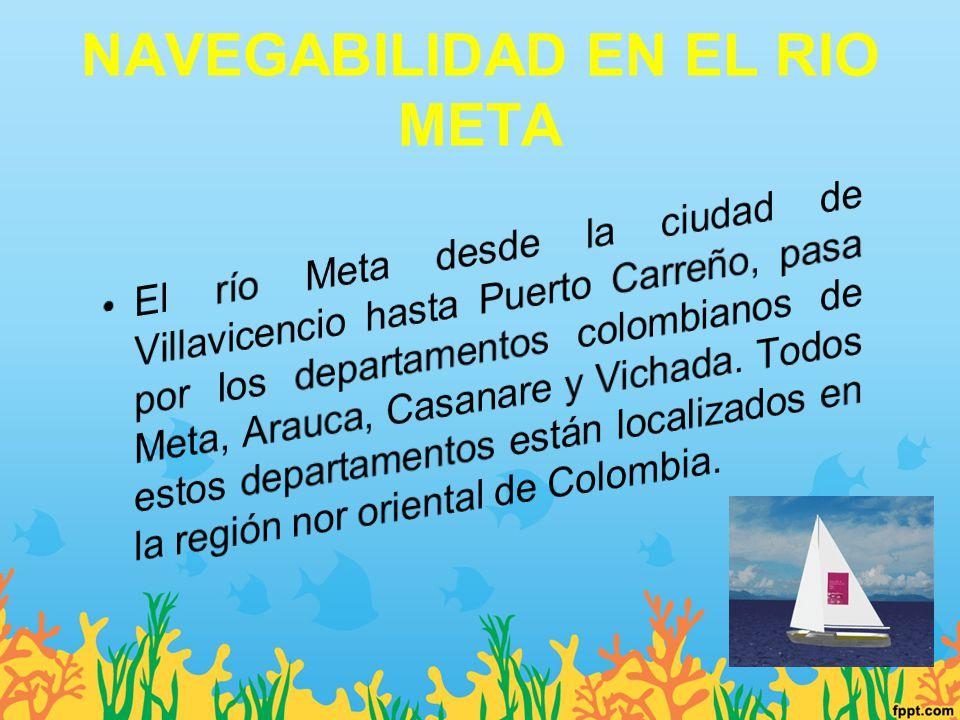 NAVEGABILIDAD EN EL RIO META