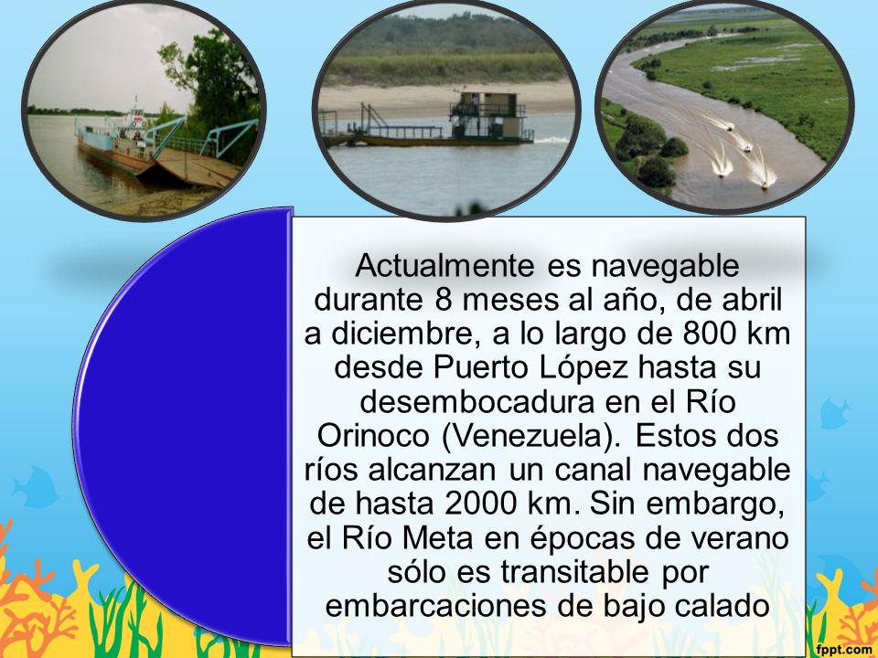 Actualmente es navegable durante 8 meses al año, de abril a diciembre, a lo largo de 800 km desde Puerto López hasta su desembocadura en el Río Orinoco (Venezuela).