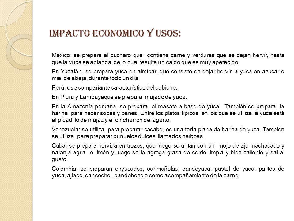 IMPACTO ECONOMICO Y USOS: