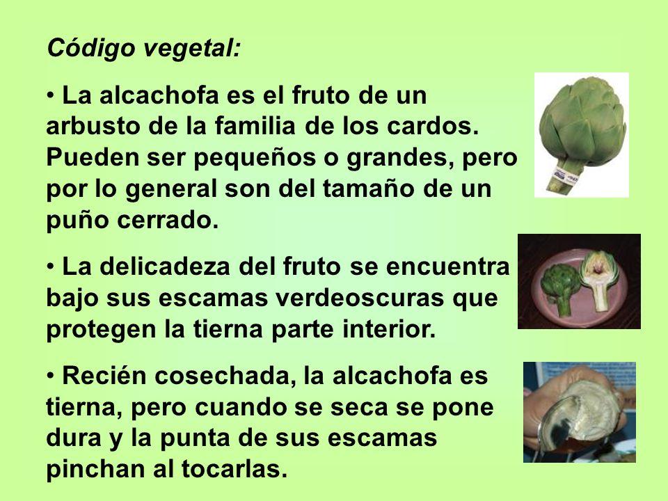 Código vegetal: