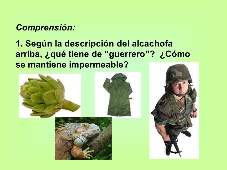 Comprensión: 1. Según la descripción del alcachofa arriba, ¿qué tiene de guerrero .