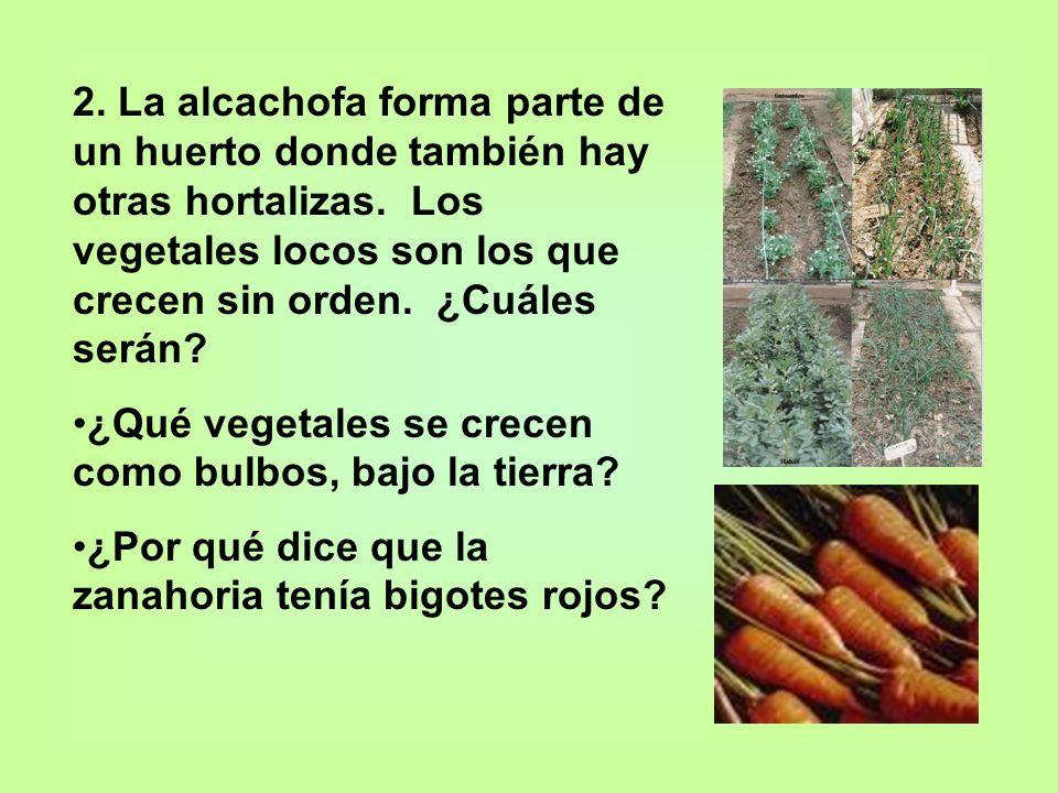 2. La alcachofa forma parte de un huerto donde también hay otras hortalizas. Los vegetales locos son los que crecen sin orden. ¿Cuáles serán