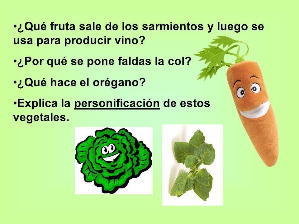 ¿Qué fruta sale de los sarmientos y luego se usa para producir vino