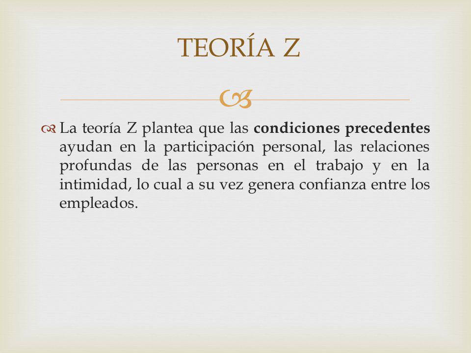 TEORÍA Z