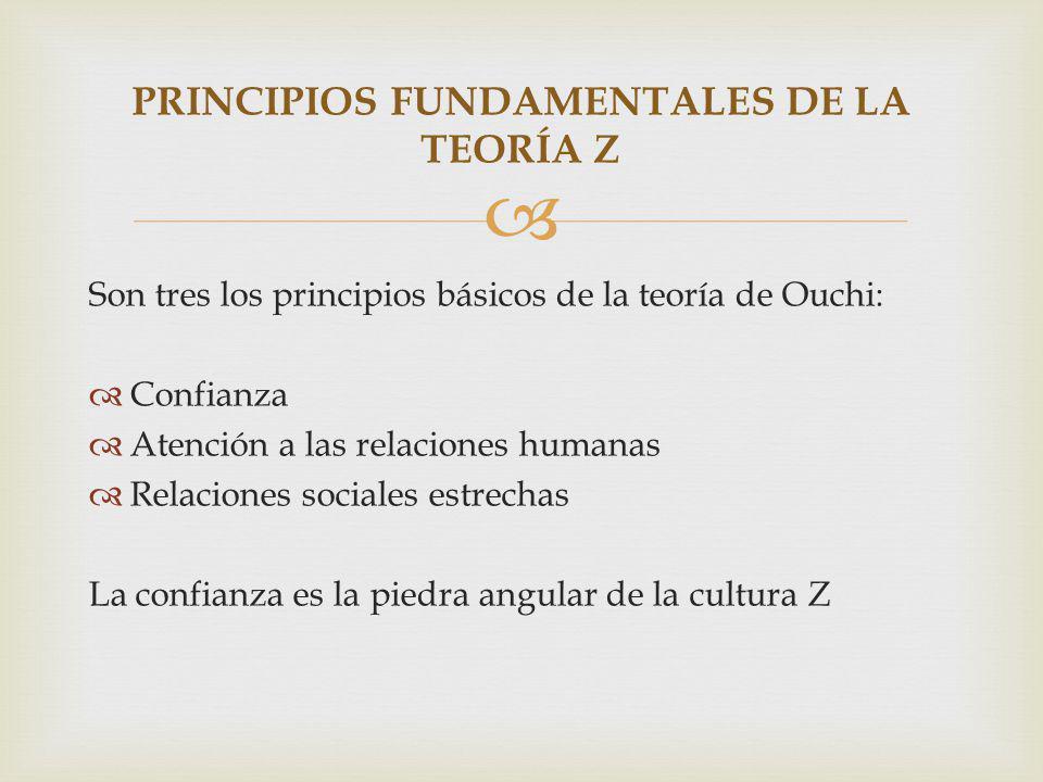 PRINCIPIOS FUNDAMENTALES DE LA TEORÍA Z