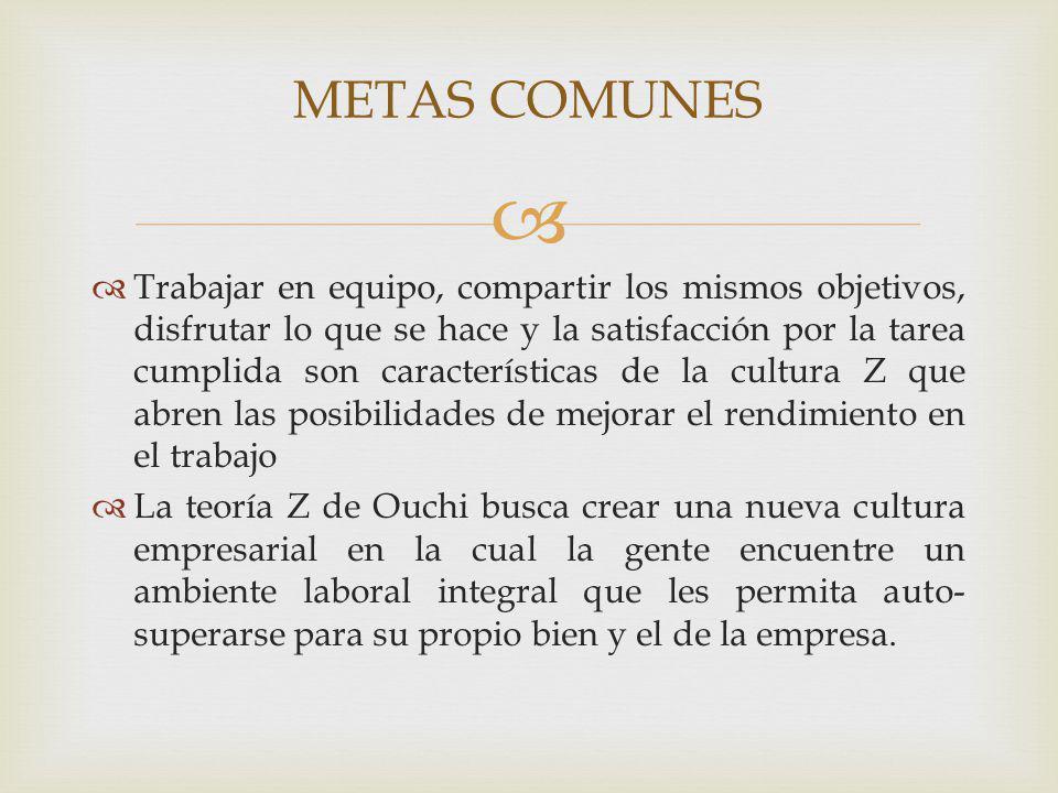 METAS COMUNES