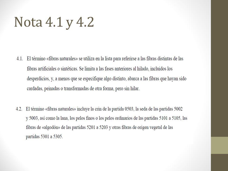Nota 4.1 y 4.2