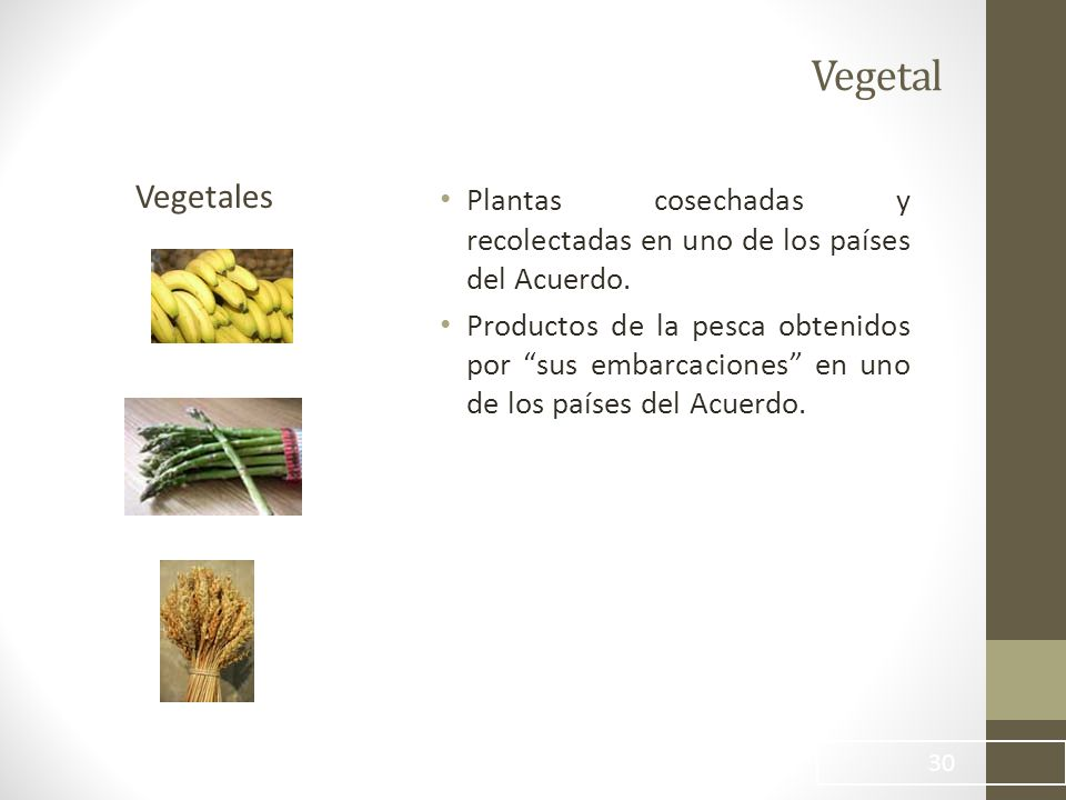 Vegetal Vegetales. Plantas cosechadas y recolectadas en uno de los países del Acuerdo.