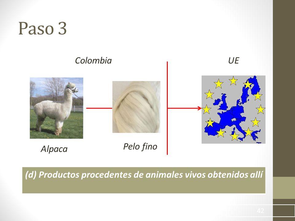 Paso 3 Colombia UE Pelo fino Alpaca