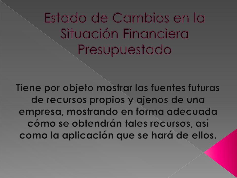 Estado de Cambios en la Situación Financiera Presupuestado