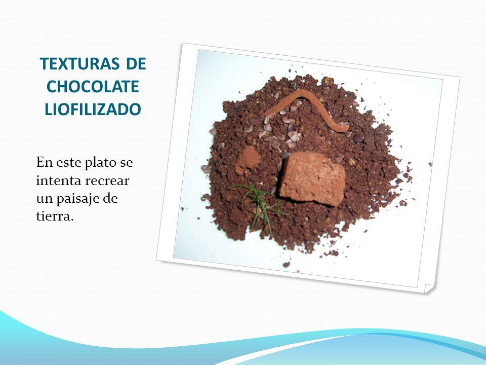 TEXTURAS DE CHOCOLATE LIOFILIZADO